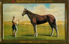 Apollinaris Pretty Polly