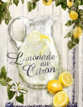 LIMONADE AND CITRON MEDIUM SIZE METAL SIGNS